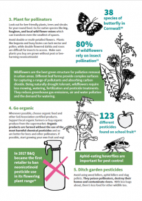 Top tips to help pollinators: 3 Plant, 4 Go organic, 5 Ditch pesticides