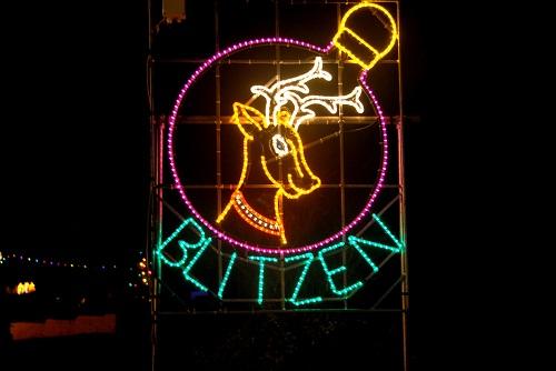 Reindeer Blitzen 2013