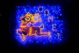 Reindeer Comet 2013